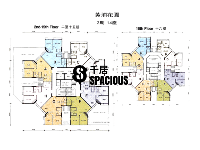 Whampoa Garden - Whampoa Garden Floor Plan 13